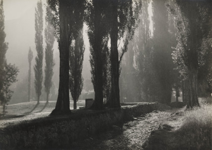 'The Valley of Poplars', c 1923.