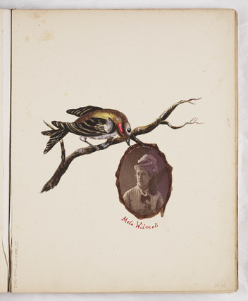 Decorated page from a photograph album, c 1860.
