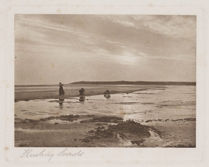 'Flushing Sands'.