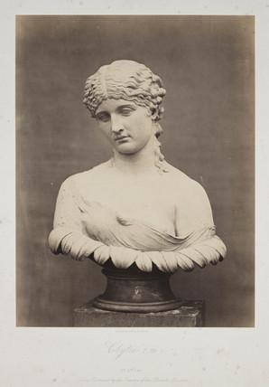 'Clytie. T 79', 1854-1858.