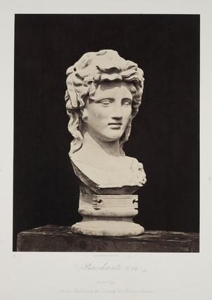 'Bacchante. T 81', 1854-1858.