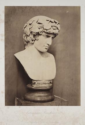 'AntinoUs, as Bacchus. T 97', 1854-1858.