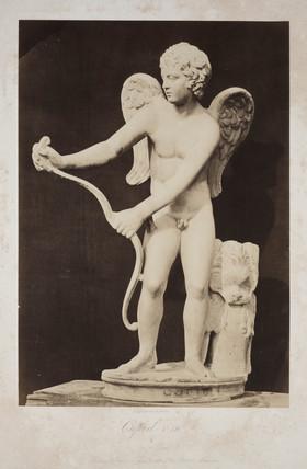 'Cupid. T 19', 1854-1858.