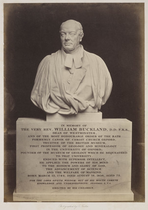 Bust of William Buckland, 1856-1858.