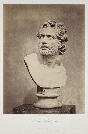 'Homeric Hero. T 86', 1854-1858.