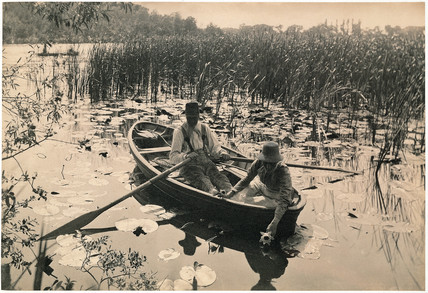 'Gathering Water Lilies', 1886.