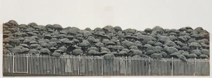 'The Derby. Umbrellas', c 1909.