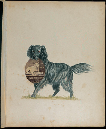 Dog carrying portrait of another dog from the same household, c 1860s.