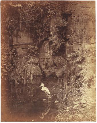 'Piscator no 2', 1856.
