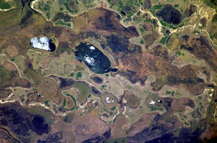 Ibera Swamp, Argentina, c 2005.