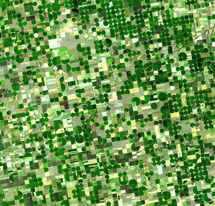 Crop circles in Finney County, Kansas, USA, 24 June 2001.