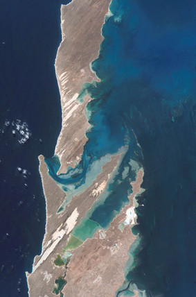 Salt farm at Shark Bay, Australia, from space, c 2006.