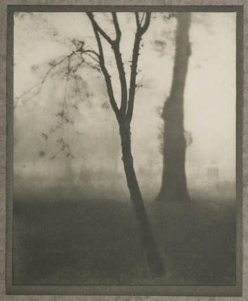 'Kensington Gardens, November', 1909.