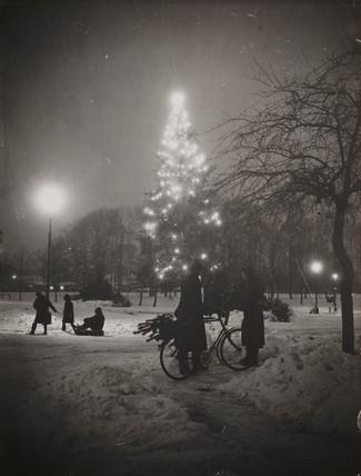 Christmas tree, Welwyn Garden City, Hertfordshire, 23 December 1938.
