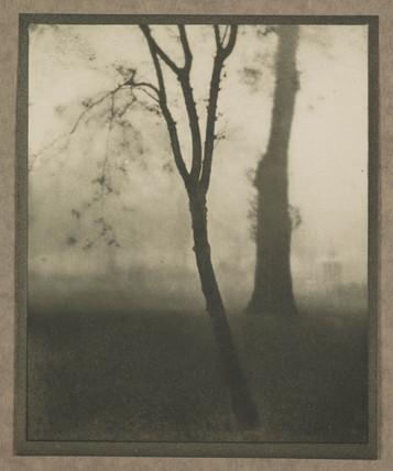 'Kensington Gardens, November', 1910.