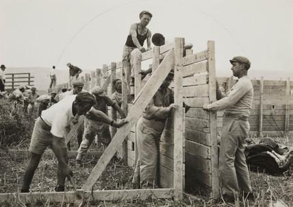American Jews in Palestine, 1938.