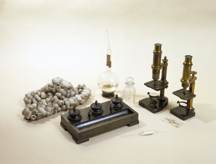 Items used by Louis Pasteur, 19th century.