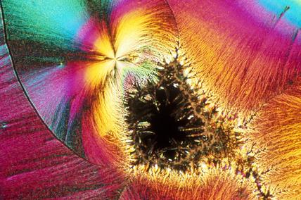 Ascorbic acid. Light micrograph under uncro