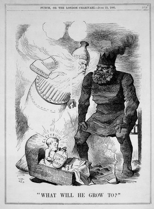 'What will he grow to?', 25 June 1881. Plat