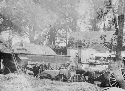 Ivel tractor with traction engine threshing, c 1900-1930.