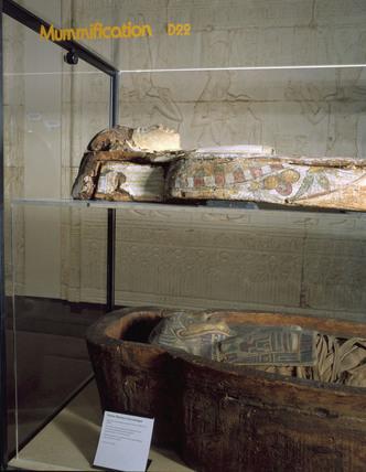 Sarcophagus containing adult human mummy, Fayyum, Egypt, 323BC-31AD.