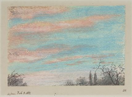Sky and treetops, 3 February 1883.