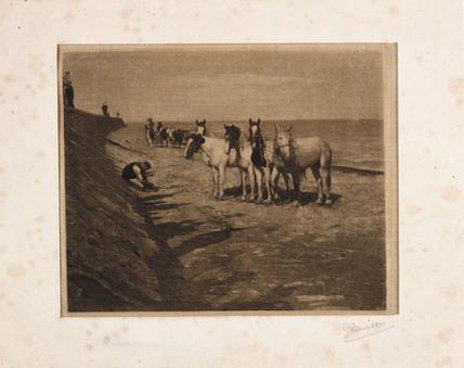 'Ring Horses', 1898.