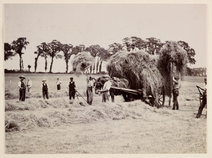 Hay gathering, c 1890.