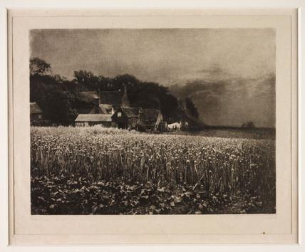 'The Onion Field', 1890.
