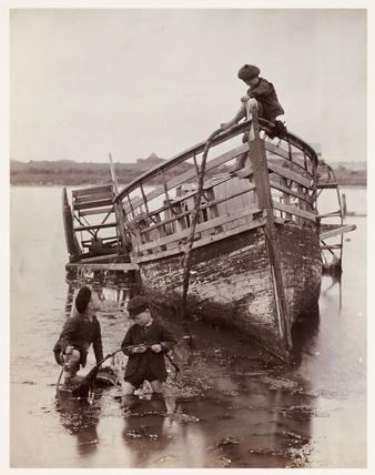 'Sea Urchins', 1888.