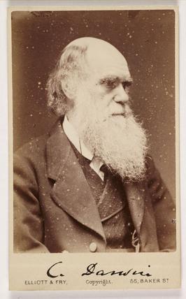Charles Darwin, c 1870s.