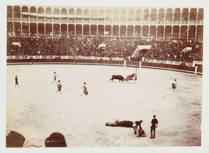 Bullfight, Madrid, c 1931.