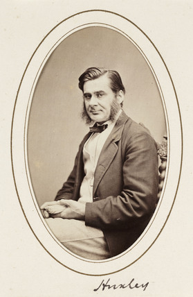 'Huxley', c 1865.