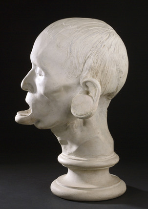 Phrenological head, Edinburgh, 1826.