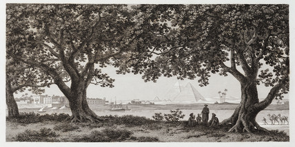 The Alley of Sycamores at the Island of Roudah, Egypt, c 1798.