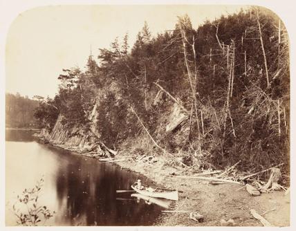 'Palisades', 1860.