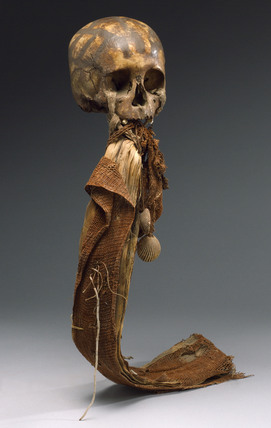 Human skull, Andaman Islands, 1871-1920.