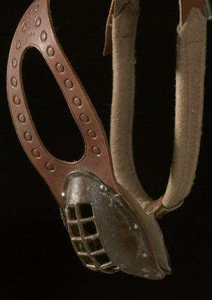 Chastity belt for a dog, France, 1919.