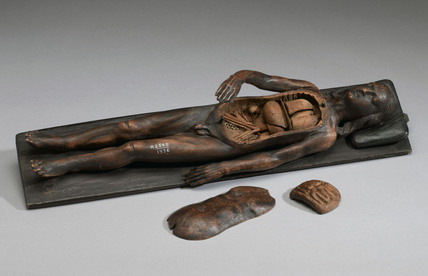Male anatomical figure, possibly 17th century.
