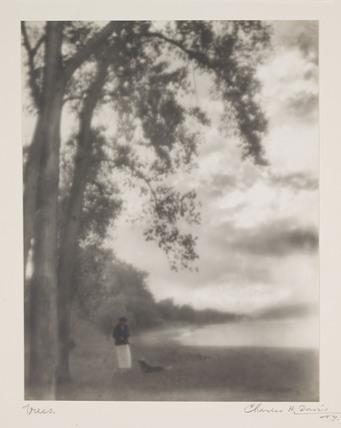'Trees', c 1910.