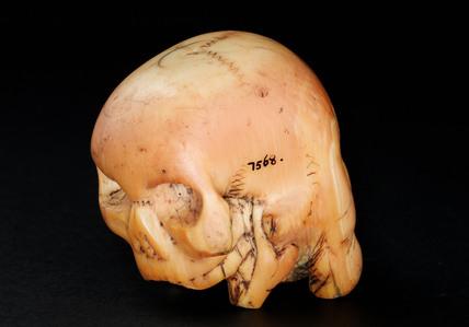 Ivory head, Japan.