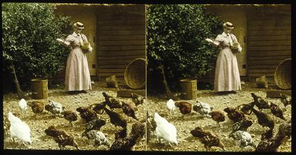 'Feeding Poultry', c 1895.