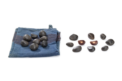 Palm nuts with cloth bag, Nigeria, 1880-1920.