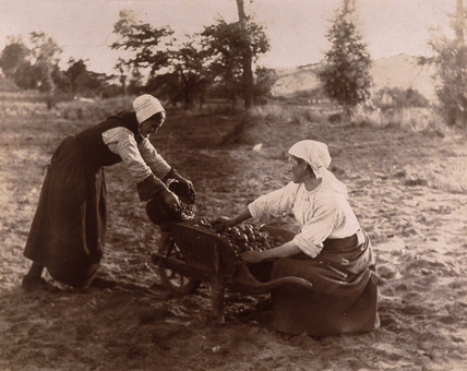 Women with wheelbarrow, c 1900.