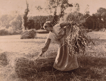 Woman gathering bales of hay, c 1900.