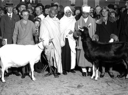 Mahatma Gandhi at a dairy show, Agricultural Hall, 24 October 1931.
