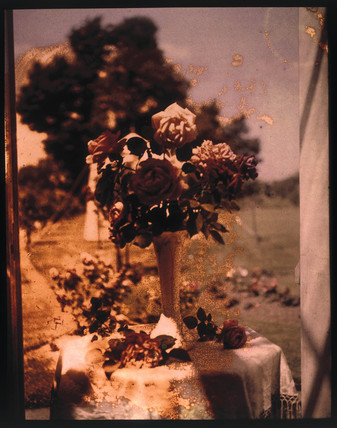 Autochrome of roses in a silver vase on a table, c 1910.
