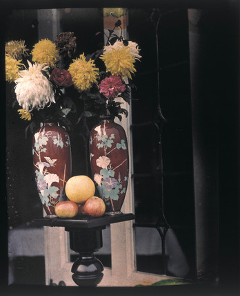 Autochrome of flowers in Chinese vases with fruit, c 1908.