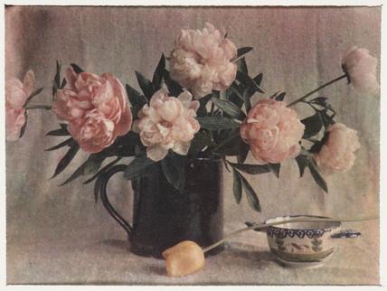 'Peonies', 1912.