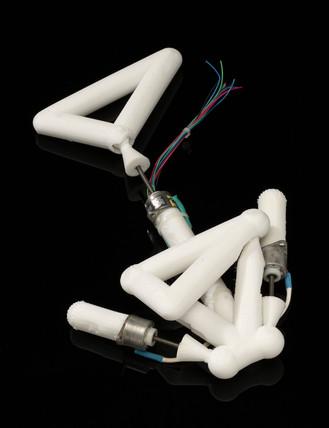 Computer-designed robot, 1999.